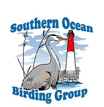 Southern Ocean Birding Group